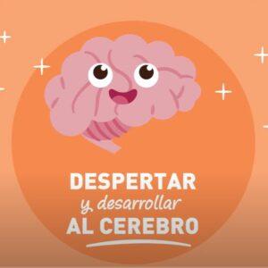 Despertar y desarrollar al cerebro